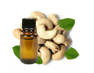 cashew oil manufacturing
